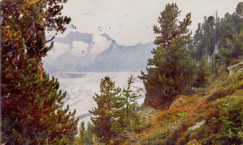 View on Aletschgletscher